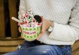Франшиза Yogumi: Замороженный йогурт YOGUMI